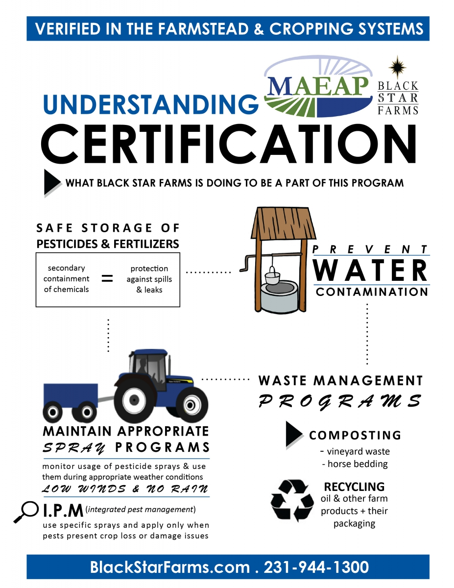 maeapinfographic