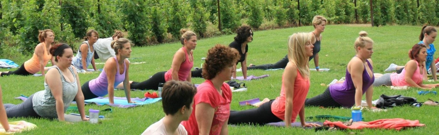 People practicing yoga in the vineyard at Black Star Farms Suttons Bay.