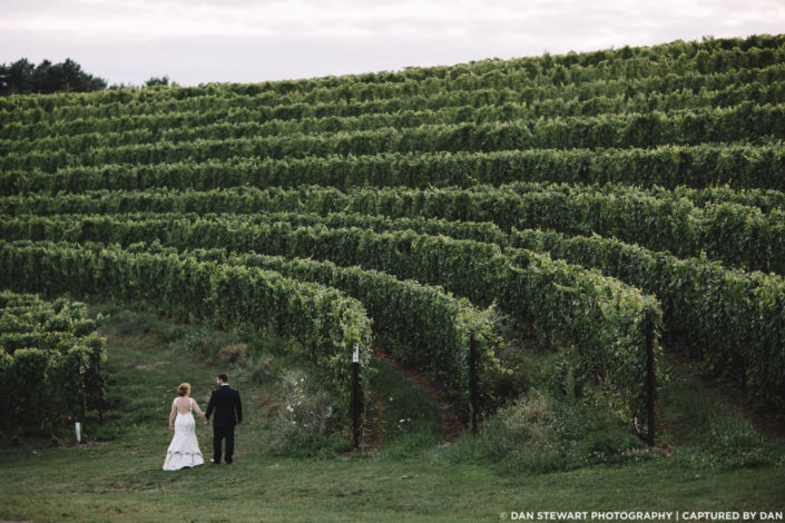 Bride and groom with a sweeping vineyard above them at Black Star Farms Suttons Bay.