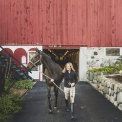Women leading a horse from the barn at the Stables at Black Star Farms.