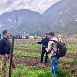 Winemaker giving a tour of the vineyard at Foradori winery in Trentino-Alto Adige, Italy.