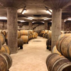 Underground wine cellar with barrels at Cantina Kante, Italy.