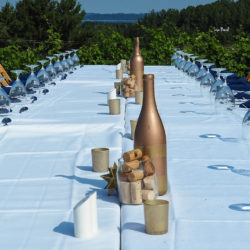 Table set in the vineyard at Black Star Farms Suttons Bay for our Arcturos Dining Series.