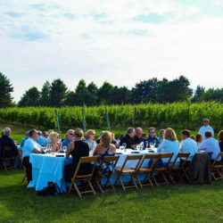 Guests dining in the vines during our Arcturos Dining Series at Black Star Farms Suttons Bay