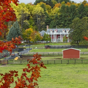 View of the Inn at Black Star Farm through red fall leaves.