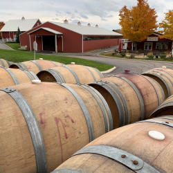 Wine barrels with the Hearth & Vine Cafe and Barns in the background.